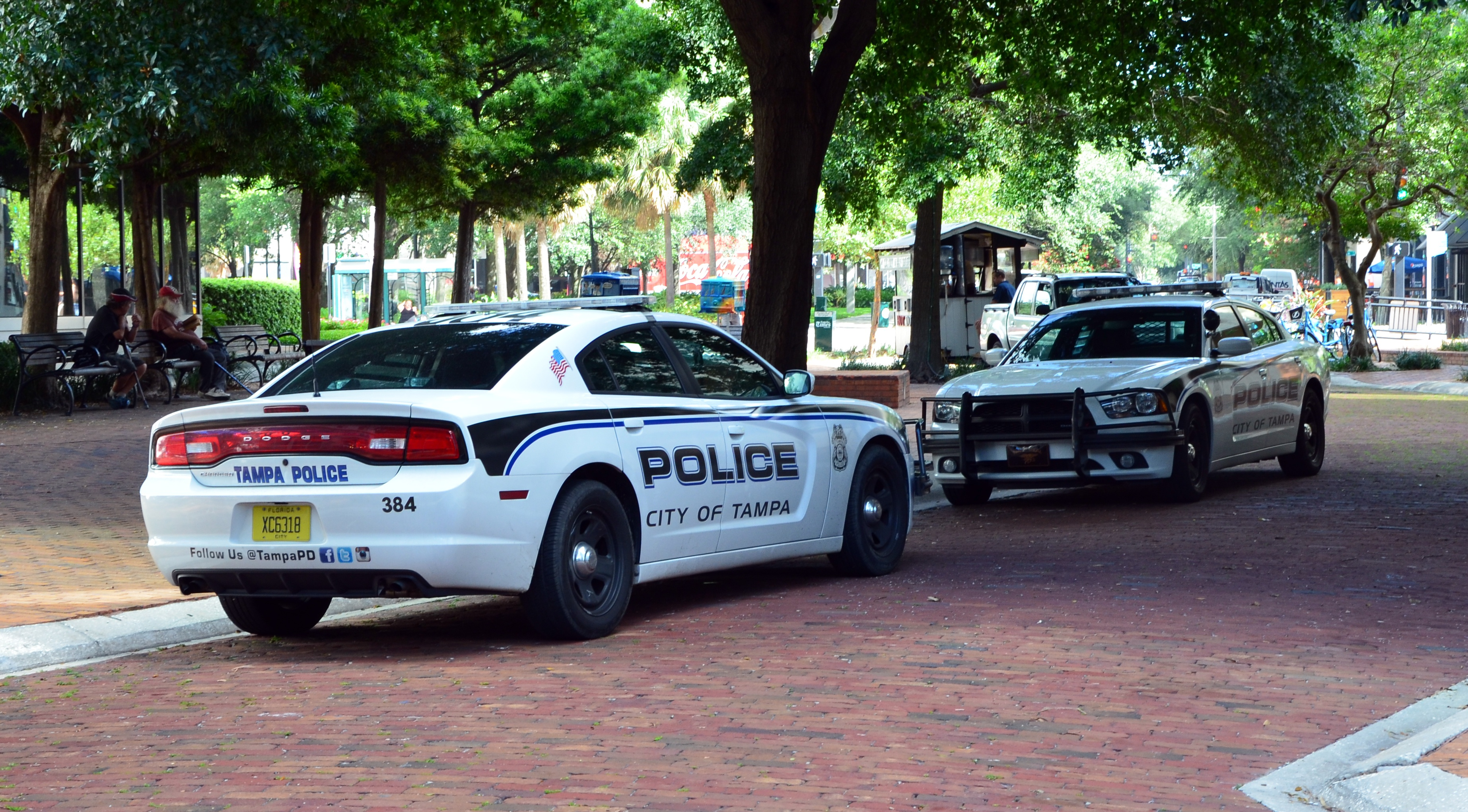 tampa police, be sure to aways file a police report